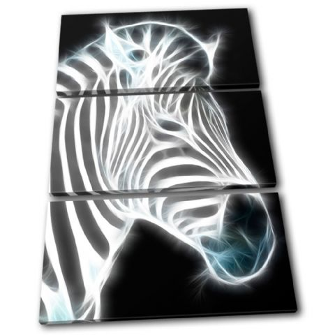 Zebra Illustration B & W Animals - 13-0218(00B)-TR32-PO